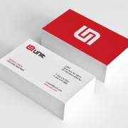 AMS Business Cards1